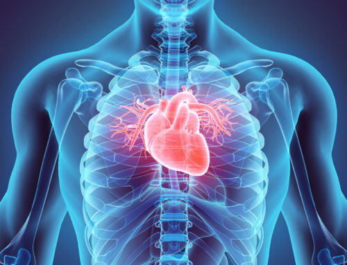Heart-on-Chip technology for Atrial Fibrillation research